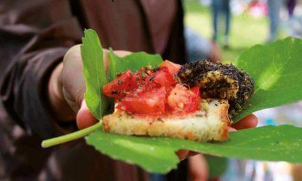Slow Food: buono, pulito e giusto