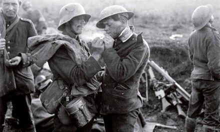 1914 : L'anno fatale