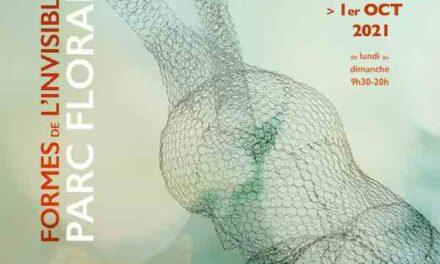 Exposition : «Formes de l'invisible» par Daniela Capaccioli